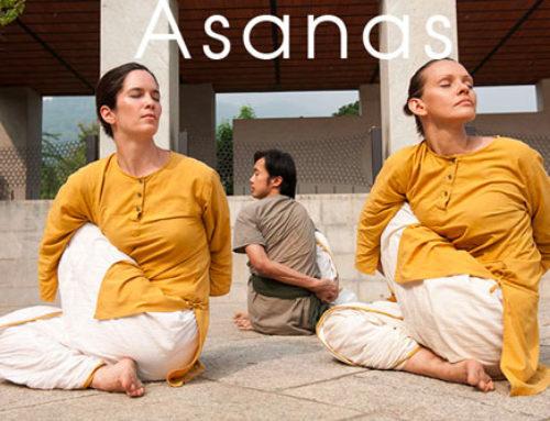 Stage Yogasanas