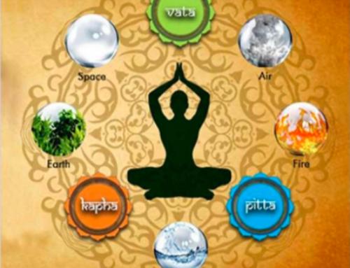 Les trois Doshas : Vata, Pitta, Kapha